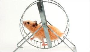 Spinning, spinning, spinning